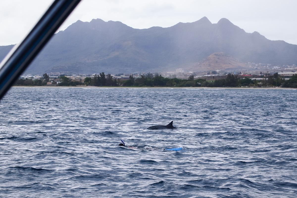 moniquedecaro_mauritius