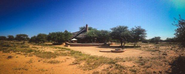 moniquedecaro-okonjima-africat