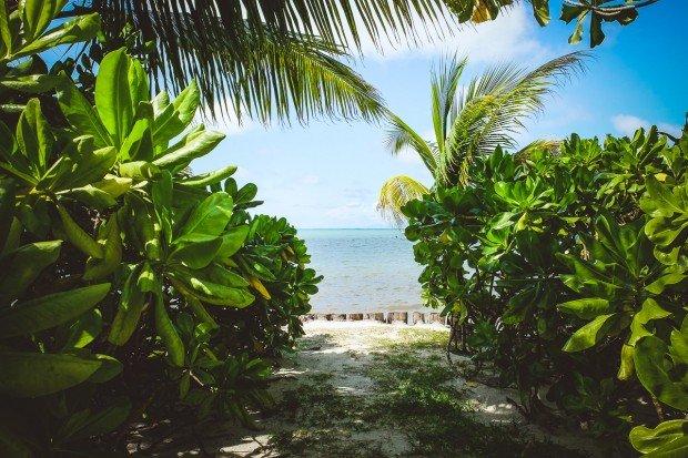 moniquedecaro-indian-ocean-lodge-seychelles
