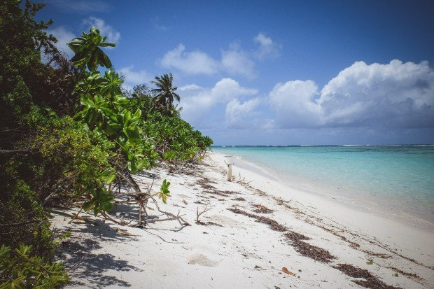 moniquedecaro-6036-denis-private-island