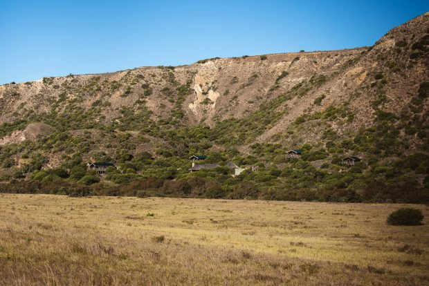 moniquedecaro_hillsnek
