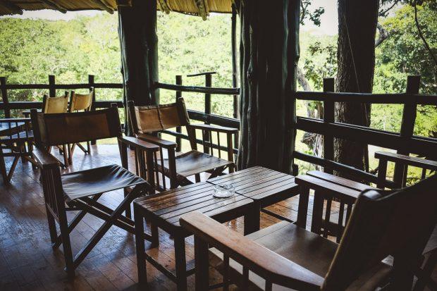 moniquedecaro-shimba-hills-7089